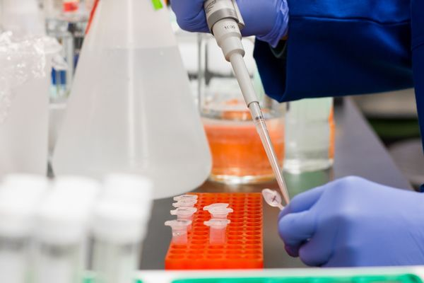 Le Sénégal réquisitionne tous les stocks de chloroquine — Coronavirus